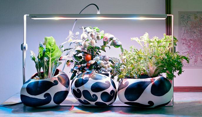 Quadra, uno dei modelli di lampada Bulbo con tecnologia LED.