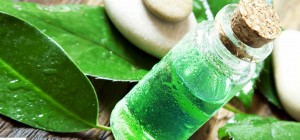 18-Amazing-Benefits-Of-Tea-Tree-Oil-For-Skin-Hair-And-Health