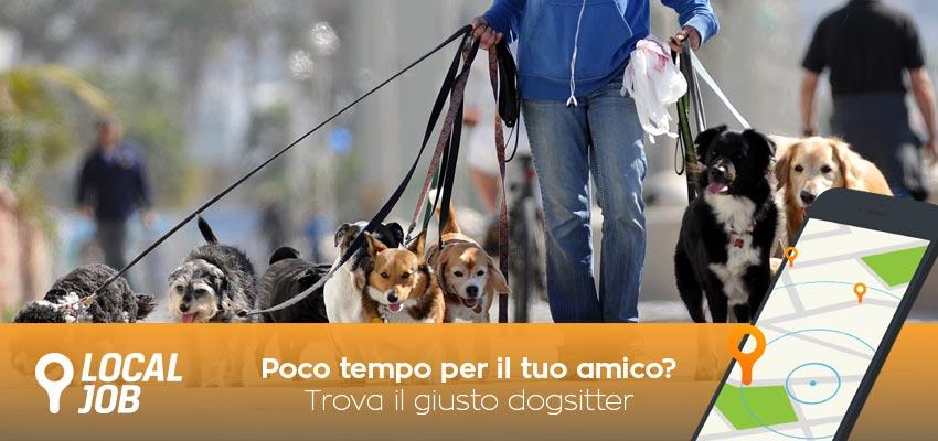 cerca-dogsitter-1.jpg