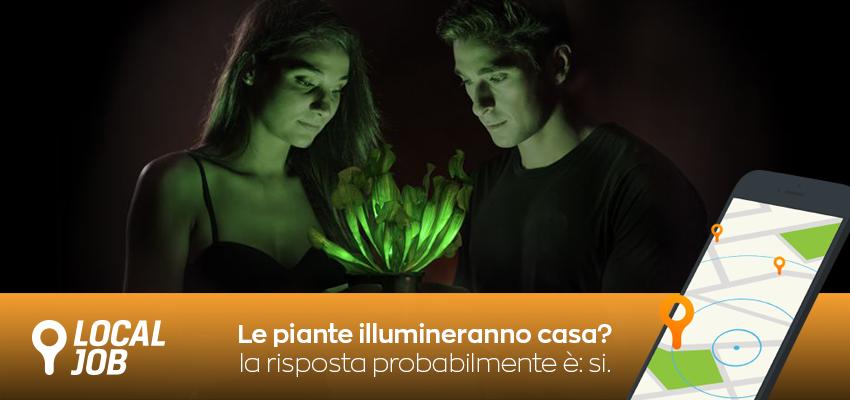 le-piante-illumineranno-casa.png