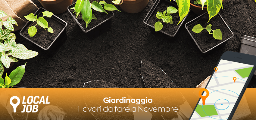 giardinaggio-lavori-da-fare-a-novembre.png