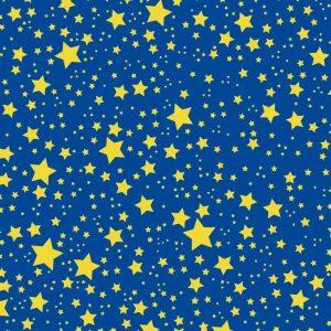 cielo stellato presepe