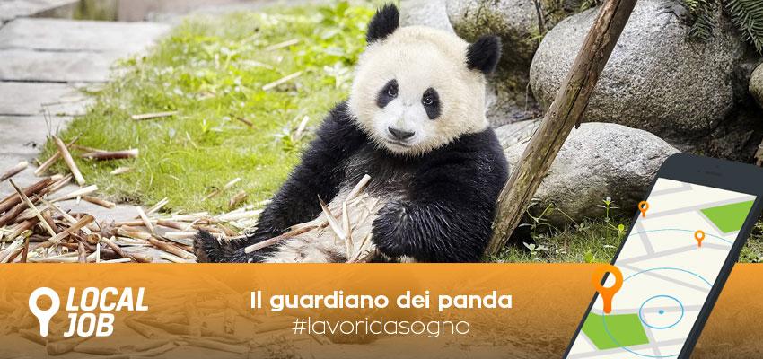 il-guardiano-dei-panda.jpg